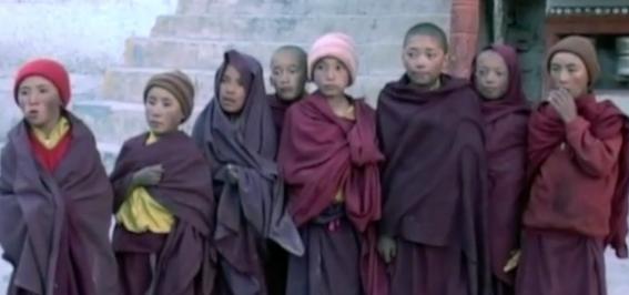 young tibetan boys